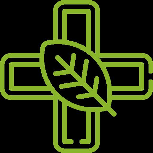 Icon pflanzliche Medizin grün